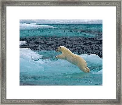 Onto The Blue Framed Print by Tony Beck