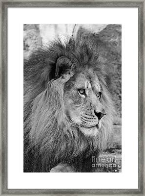 Onyo #13 Black And White Framed Print