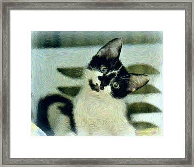Onyx Framed Print