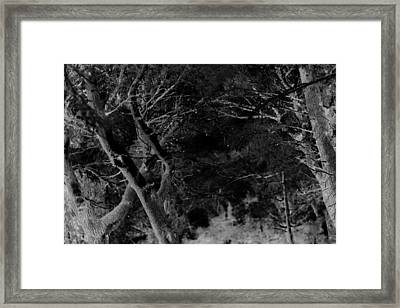 Oooooh, Do You Hear Me Framed Print