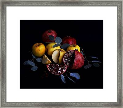 Opal Apples And Pomegranates Framed Print