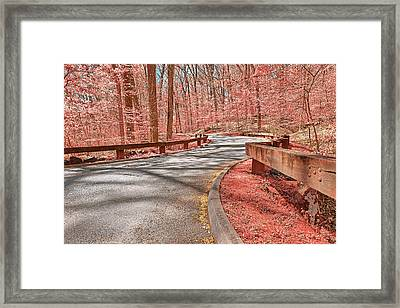 Opalescent Forest Road Framed Print