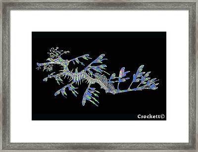 Opalised Sea Dragon Framed Print
