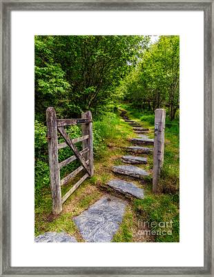 Open Country Gate Framed Print by Adrian Evans