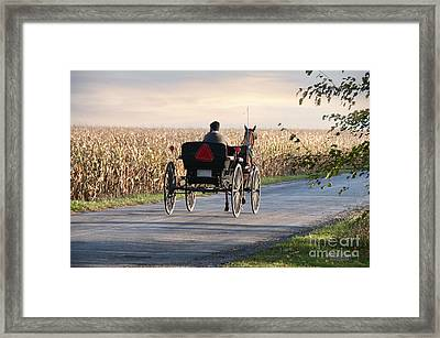 Open Road Open Buggy Framed Print