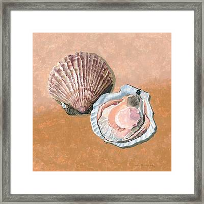 Open Scallop Framed Print