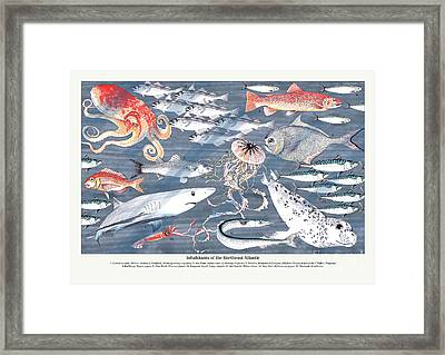 Open Sea Annotated Framed Print by Jacqueline Colley