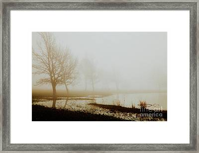 Framed Print featuring the photograph Open Space by Iris Greenwell