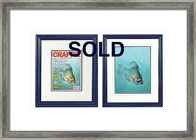 Open Water Crappie Framed Print