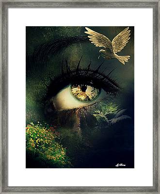 Open Your Eyes To Beauty Framed Print by G Berry