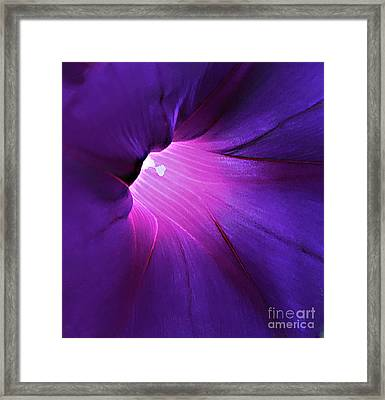 Opening One's Heart Framed Print by Sherry Hallemeier
