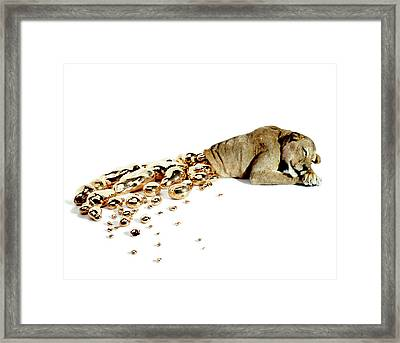 Ophelia Framed Print by Afke Golsteijn