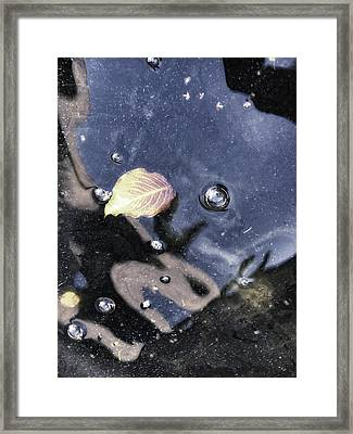 Ophelia's Last Glance Framed Print by Donna Blackhall