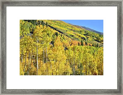 Framed Print featuring the photograph Ophir Road Hillside by Ray Mathis