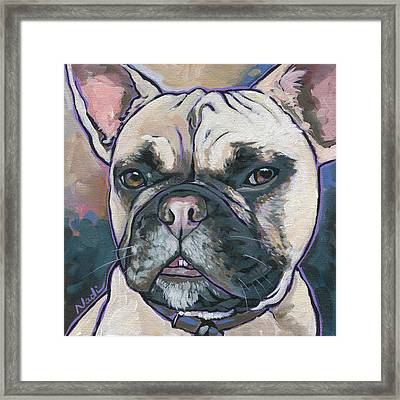 Opie Framed Print by Nadi Spencer