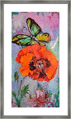 Opium Addiction, Butterfly On Poppy, Poppy Oil Painting Framed Print by Soos Roxana Gabriela