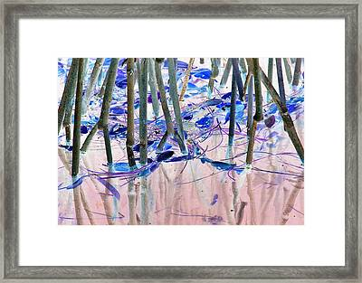 Mangrove Shoreline No. 2 Framed Print