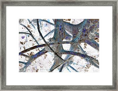 J-lintz - Natural Interchange Framed Print