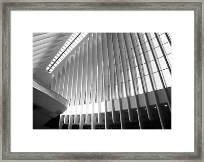 Optical Oculus Framed Print by Jessica Jenney