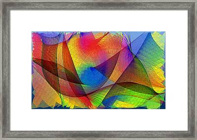 Optical Pattern Framed Print by Eric Heller