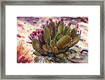 Opuntia Cactus Framed Print by Donald Maier