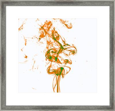 Orange And Green Framed Print by Rainer Kersten