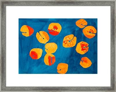 Orange Apricots Framed Print by Vitali Komarov