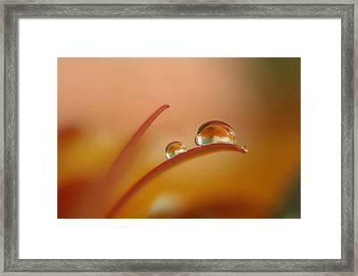 Orange Arc Trio Framed Print