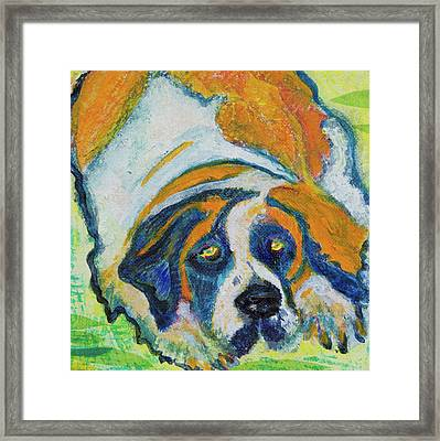 Orange Bernard Framed Print