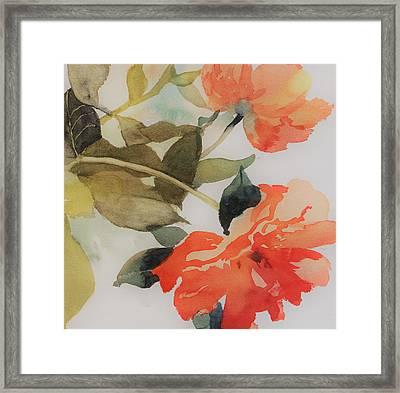 Orange Blossom Special Framed Print by Elizabeth Carr