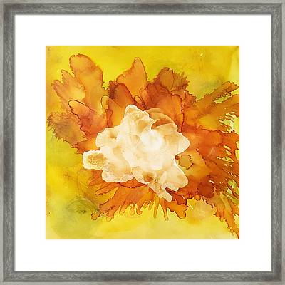 Orange Blossom  Framed Print by Suzanne Canner