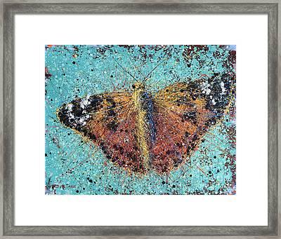 Orange Butterfly Framed Print by Michael Glass