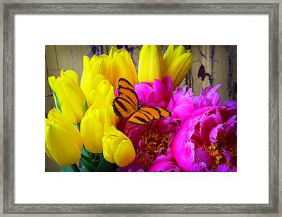 Orange Butterfly On Peony Framed Print