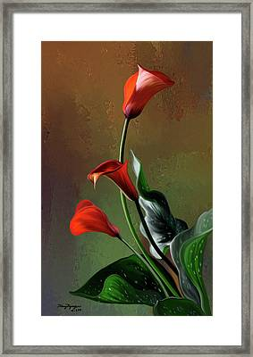 Orange Calla Lily Framed Print by Thanh Thuy Nguyen