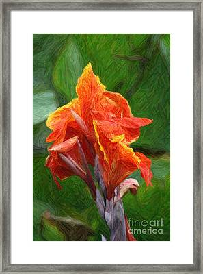 Orange Canna Art Framed Print by John W Smith III