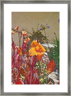 Orange Canna Lilies Digital I Framed Print by Linda Brody