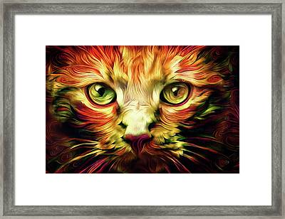 Orange Cat Art - Feed Me Framed Print