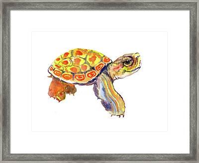 Orange Cute Baby Turtle Framed Print by Suren Nersisyan