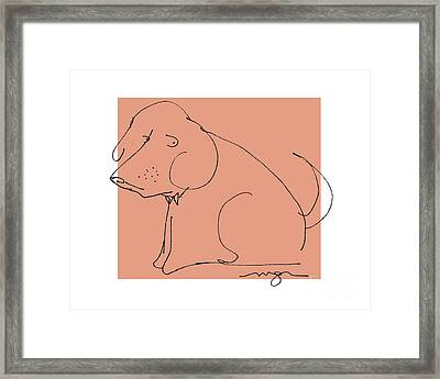 Orange Dog Framed Print