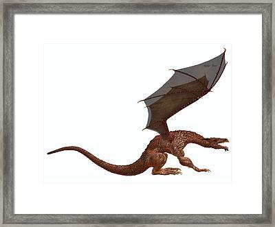 Orange Dragon Framed Print by Corey Ford
