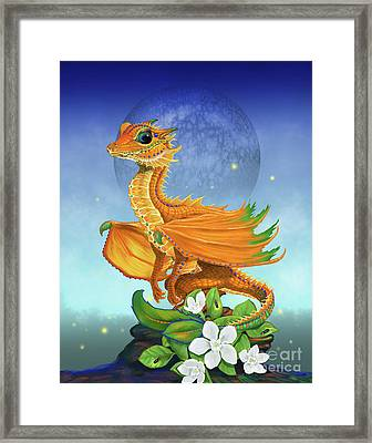 Orange Dragon Framed Print by Stanley Morrison