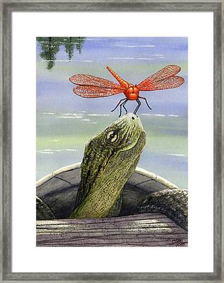 Orange Dragonfly Framed Print