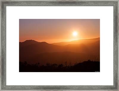 Orange Euphoria Framed Print