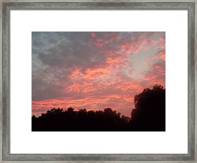 Orange Florida Sunset Framed Print by Warren Thompson