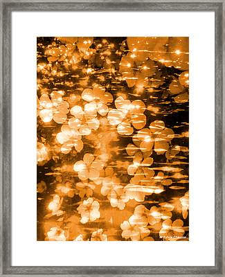 Orange Flowers And Sparkling Water Framed Print by M Sylvia Chaume