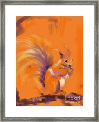 Orange Forest Squirrel Framed Print