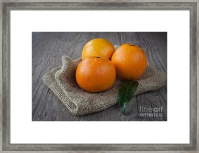 Orange Fruit Framed Print by Sabino Parente