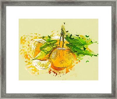 Orange Fruit Framed Print