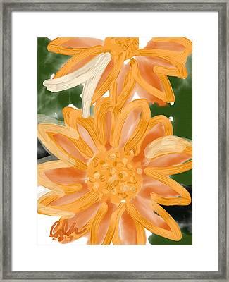 Orange Gerbers Framed Print