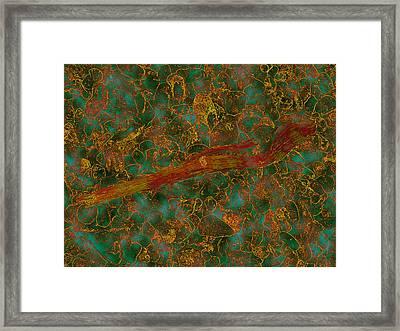 Orange-green Flotsam Framed Print by Dan McCarthy